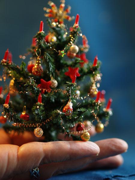 top 28 miniatur weihnachtsbaum miniatur weihnachtsbaum online kaufen gerda h 252 sch mini. Black Bedroom Furniture Sets. Home Design Ideas