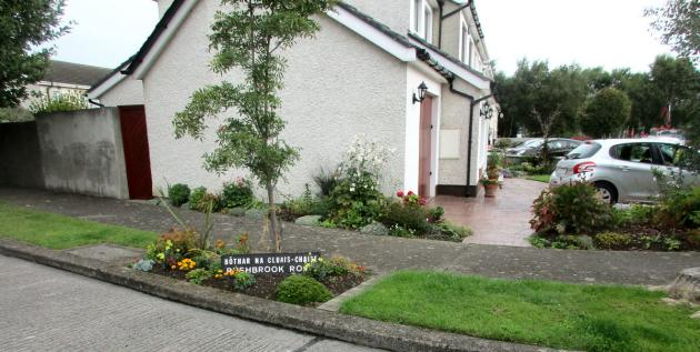 My homestay in Templeogue